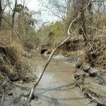 Minería en Colombia 2015 De las ventajas corporativas a las zonas de sacrificio minero
