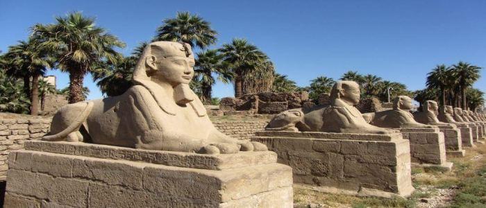 Tagesausflug nach Luxor ab El Quseir mit Bus