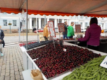 Amazing red cherries for sale. Not locally sourced, but incredibly delicious.