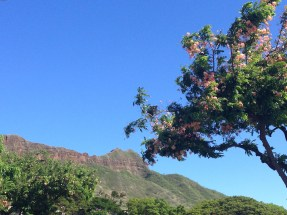 Diamond Head Crater from the street.