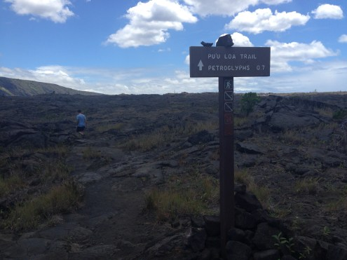 The path to the petroglyphs off the main road.