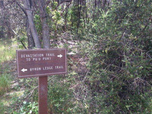The mile loop trail surrounding the massive crater.