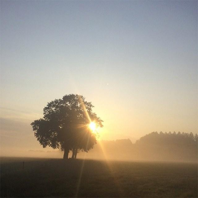 Sunrise as soon on my morning run