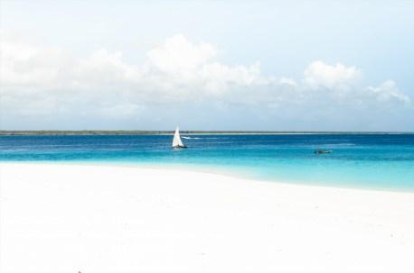Beach at Mnemba Island Lodge