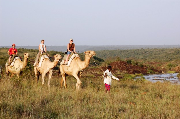 Camel safari from Sosian