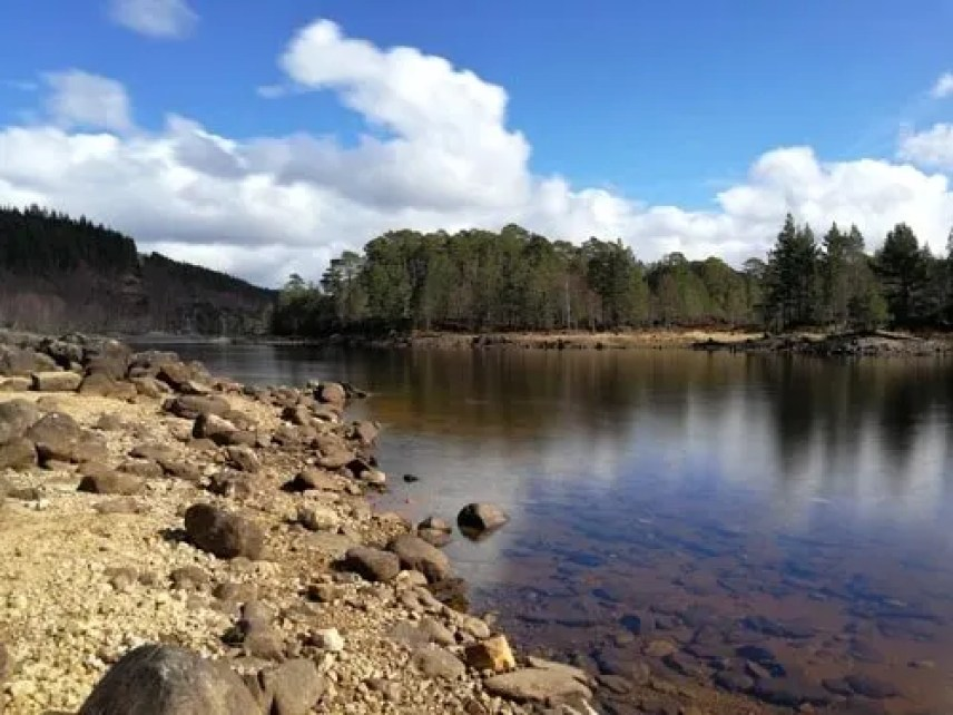 Travel With Our Kids,FAMILY FRIENDLY GLEN AFFRIC WALKS