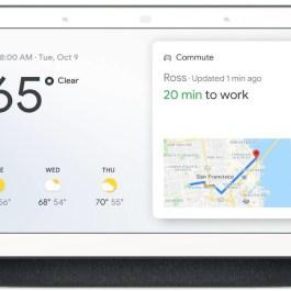 Google Nest Home Hub Assistant, hall