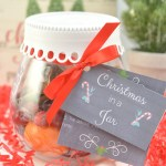 Christmas Gift Idea Diy Christmas Potpourri In A Jar