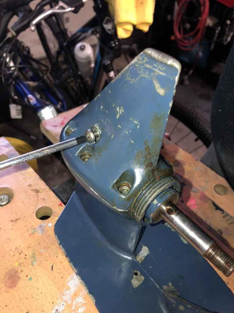 Lower Unit Rebuild Pivot Screw
