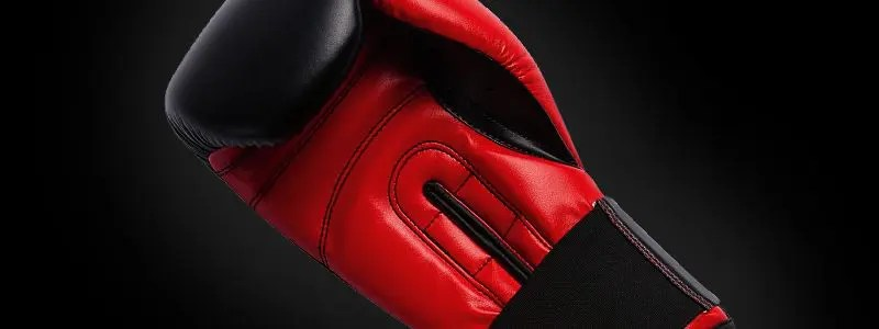 4 BEST BOXING GLOVES FOR BEGINNERS IN 2019