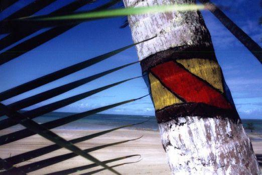 Detalle de palmera pintada