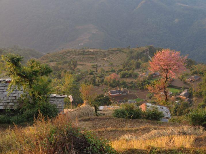 Bajo Jayagaon, Syllan, Nepal