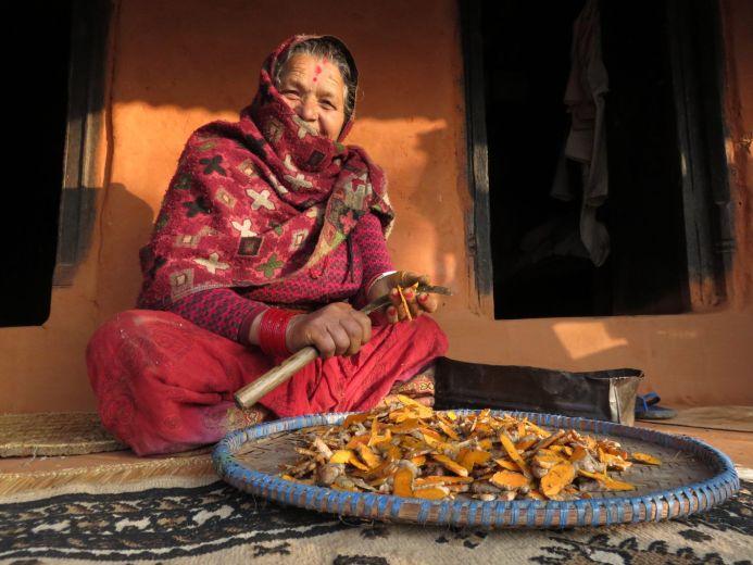Mujer, cúrcuma, Jayagaon, Nepal