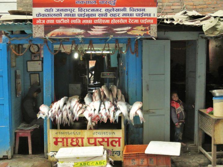 Pescadería, Katmandú, Nepal
