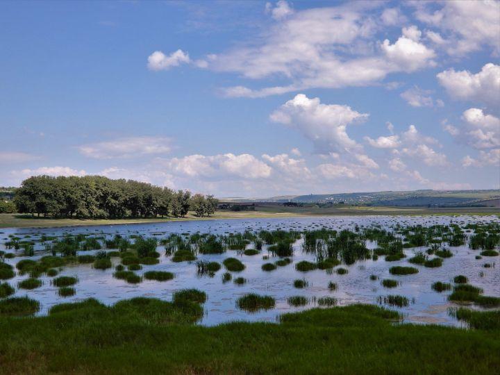 Moldavia, humedal en Scorteni