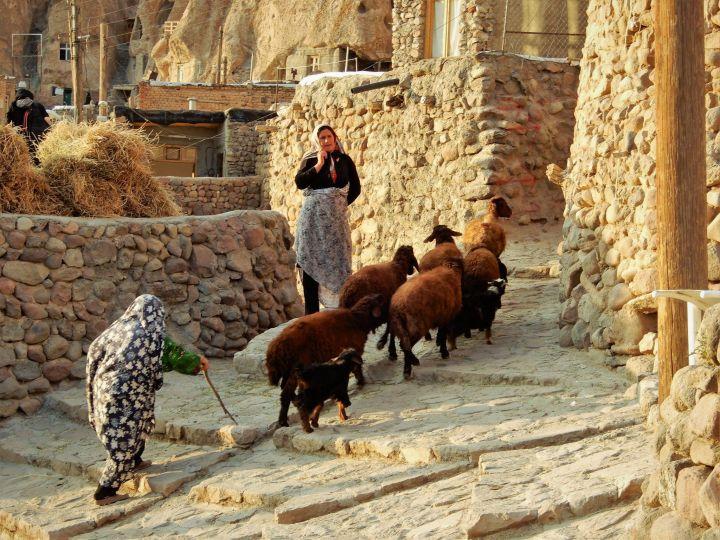 Ovejas en Kandován, Azerbayán Este, Irán