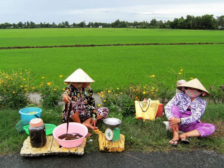 Vendedoras en delta del Mekong