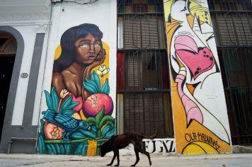 India pensativa, Grafitis en La Habana16A