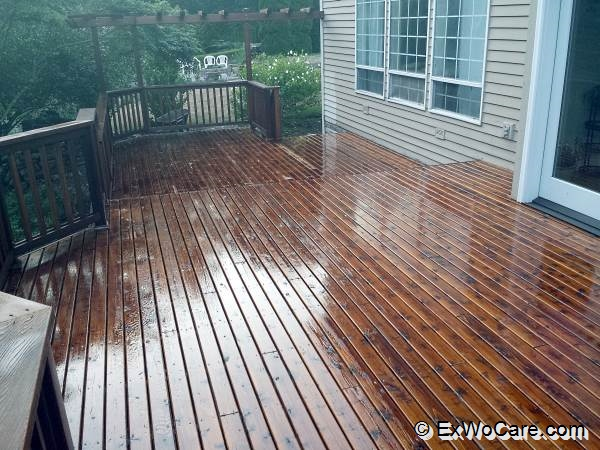 dark walnut on cedar deck