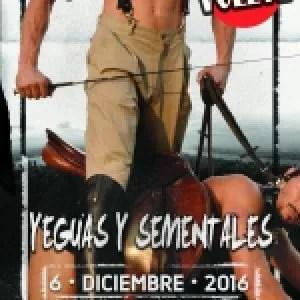 Yeguas y sementales, el 6 de diciembre