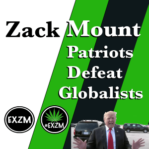 Official Patriots Defeat Globalists Album Cover 3 25 2019 2