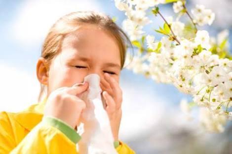 alerji neden olur