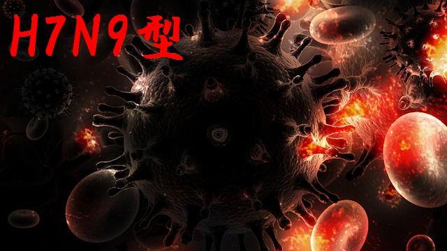新型インフルエンザ(H7N9型)は人から人への感染の可能性はあるのか?