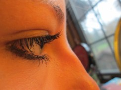 The lashes are probably one of the coolest things about the eye. Not only do they act as protection, but are also a way to decorate the eye as well.