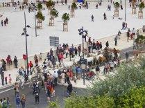 9 juin 2013, L'arrivée à Marseille de TransHumance / Marseille-Provence 2013 / Sur le site de mp2013.fr/TransHumance & sur le site du Théâtre du Centaure /