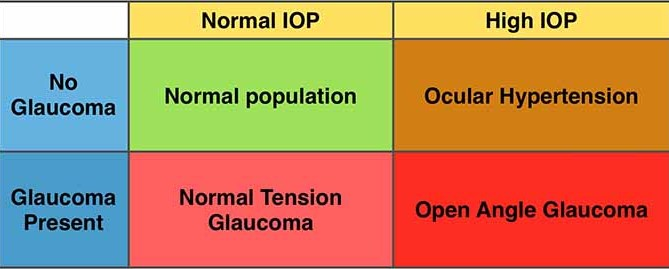 What is the Normal Range of Intraocular Pressure