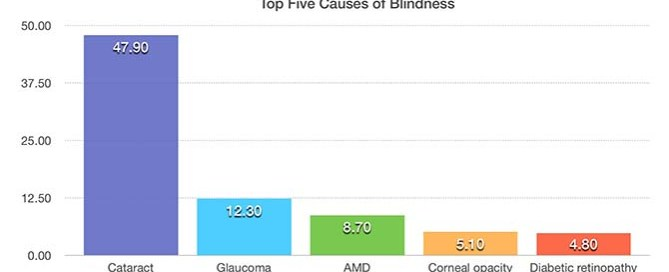top 5 causes of blindness