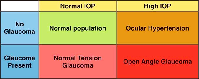 Is High Eye Pressure Always Glaucoma? 1