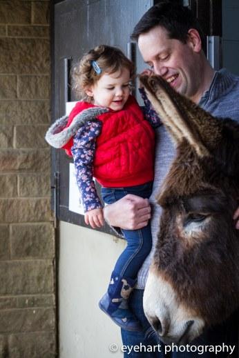 Donkey Spring Fair 2016-25