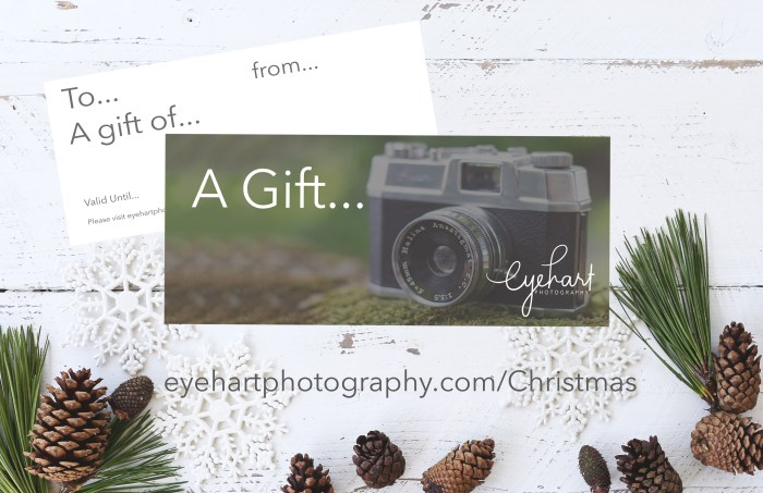Gift Voucher Christmas Promo with link