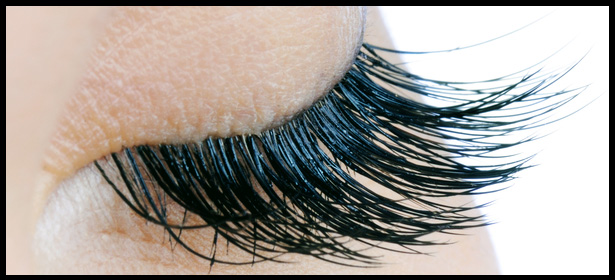 Call us today to have your lashes done by Eyeland Lash