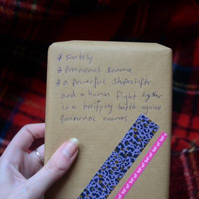 De eerste Blind date met een boek met de hints Fantasy, Paranormal Romance en meer.