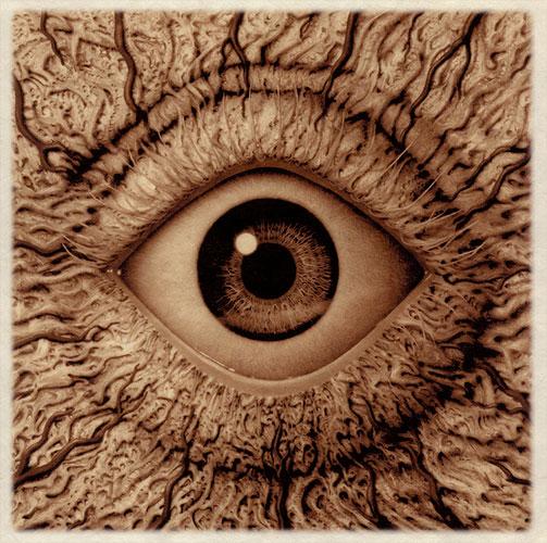 eye erosion