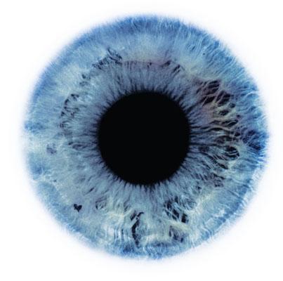 rankin eye #1