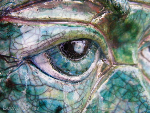 turtle eyed
