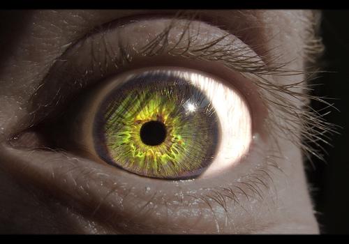 gleen eye