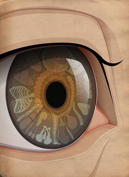 iridology graphic