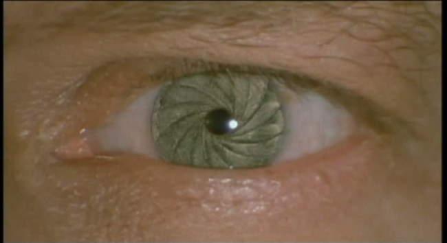 iris contact lens