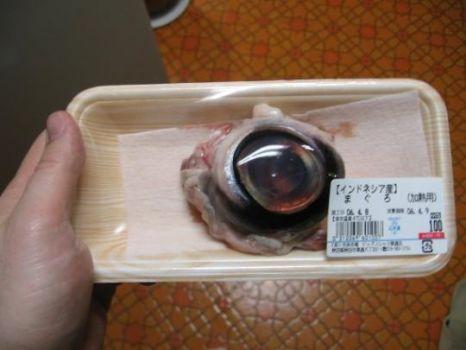 1 x Tuna Eyeball