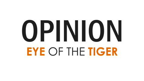 EYE OF THE TIGER'S VIEW: Safety updates fortify campus