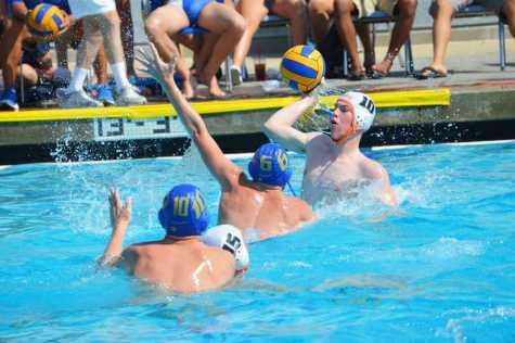 Polo finishes league, looks toward postseason