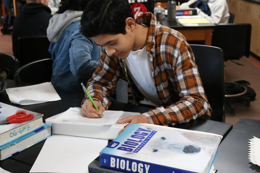 Junior Josh Noa works in Darcee Durham's CP Biology class last Friday. A New NGSS course will replace CP Bio at the start of next school year.
