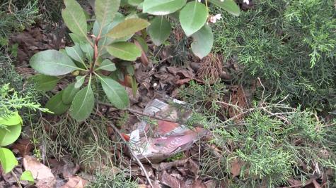 TRAN: Trash indicative of apathy