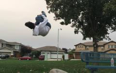 Sophomore somersaults into action