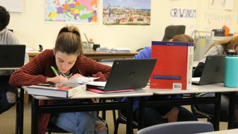 A student in Carol Crabtree's AP European History class works with Chromebooks and textbooks. With RJUHSD's One-to-One Chromebook initiative, digital materials may become more integrated into curriculum.
