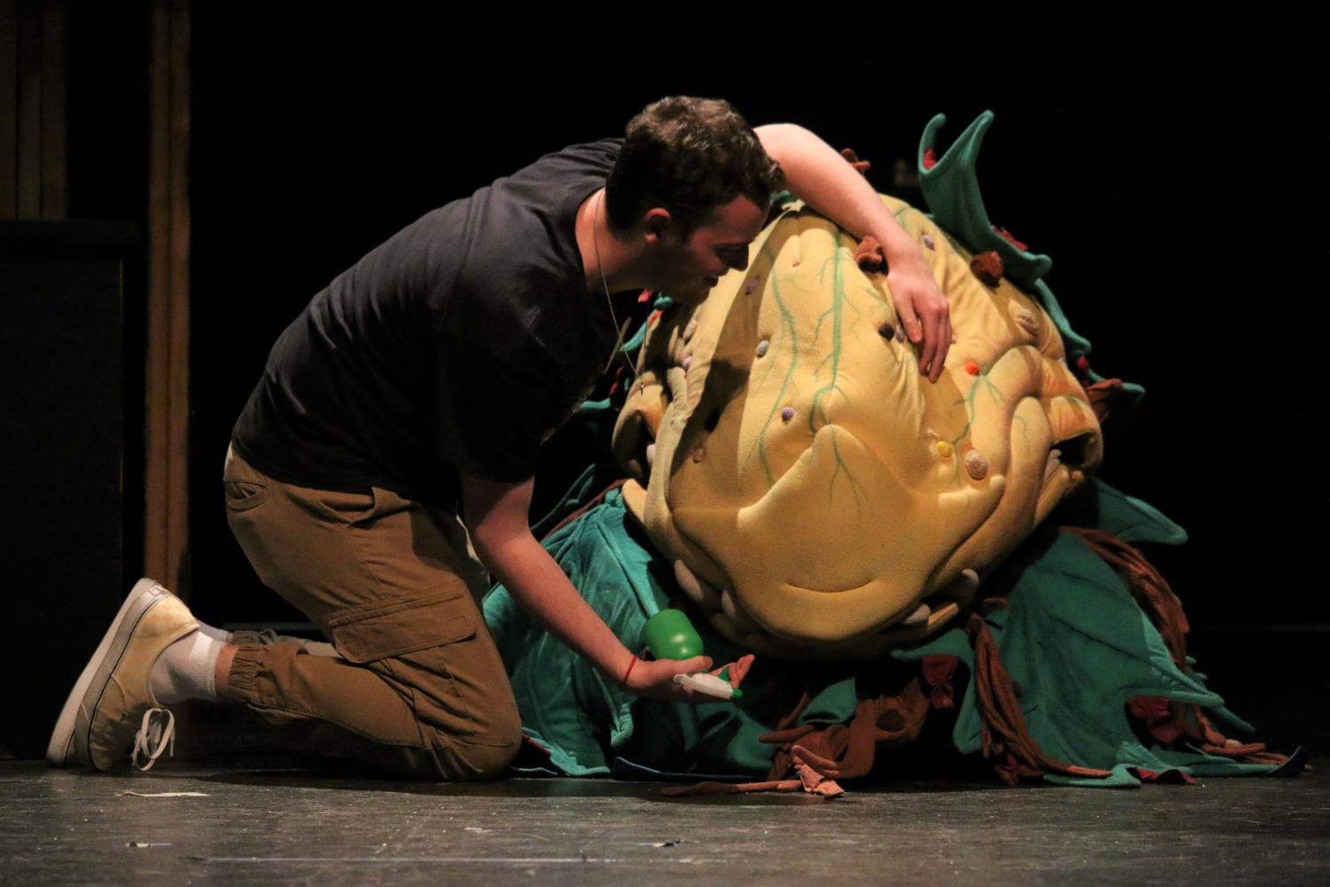 Douglas Pomin rehearses as Seymour with Audrey II in RHSTCo's latest production, Little Shop Of Horrors.